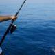 accessoires de pêches
